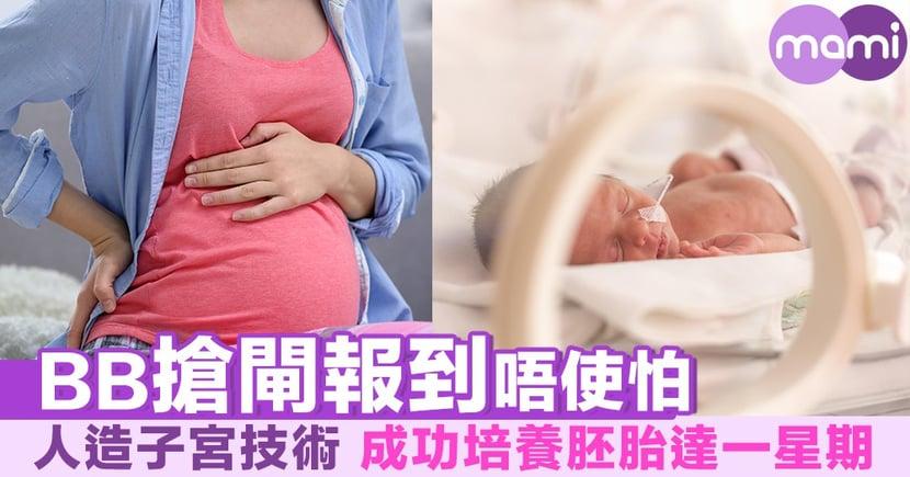 BB搶閘報到唔使怕 人造子宮技術成功培養胚胎達一星期