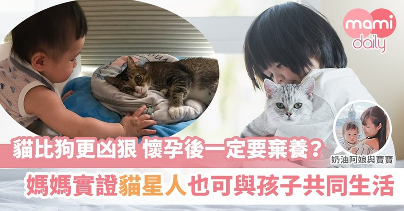 【奶油寶寶與育兒好搭擋貓星人】