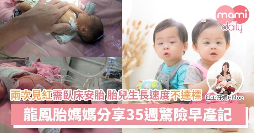 【生產記】為母則強之龍鳳胎驚險懷孕早產記