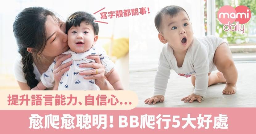 爬行5大好處+引導寶寶學爬3步曲