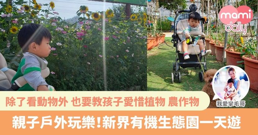 【親子好去處】帶孩子到戶外呼吸一下新鮮空氣 志在一家人聚聚
