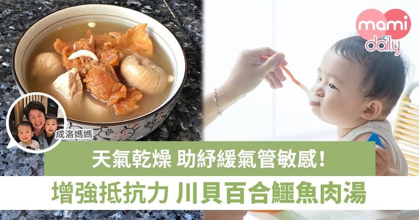 【成洛媽媽家常湯】川貝百合鱷魚肉湯