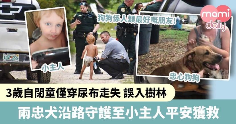 【忠心狗狗】3歲自閉童僅穿尿布走失誤入樹林 兩忠犬沿路守護至平安獲救