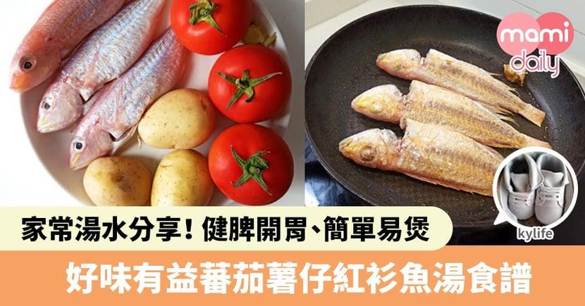【家常湯水分享】健脾開胃、簡單易煲!蕃茄薯仔紅衫魚湯食譜