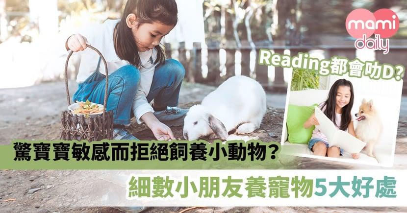 【飼養寵物】驚寶寶敏感而拒絕飼養小動物?細數小朋友養寵物5大好處