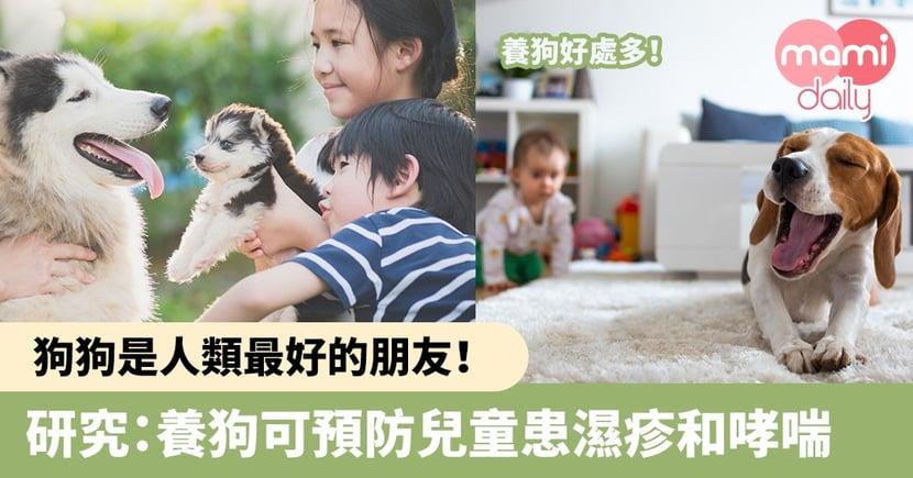 【兒童健康】狗狗是人類最好的朋友!研究:養狗可預防兒童患濕疹和哮喘風險