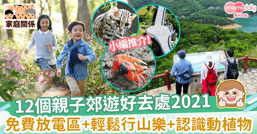 【親子郊遊好去處2021】12個暑假活動推介!免費放電區+輕鬆行山樂+認識動植物